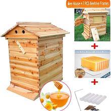 Автоматический деревянный улей дом 7 шт. улей рама улей деревянный улей оборудование для пчеловодства улей поставка улей инструмент для пчеловода