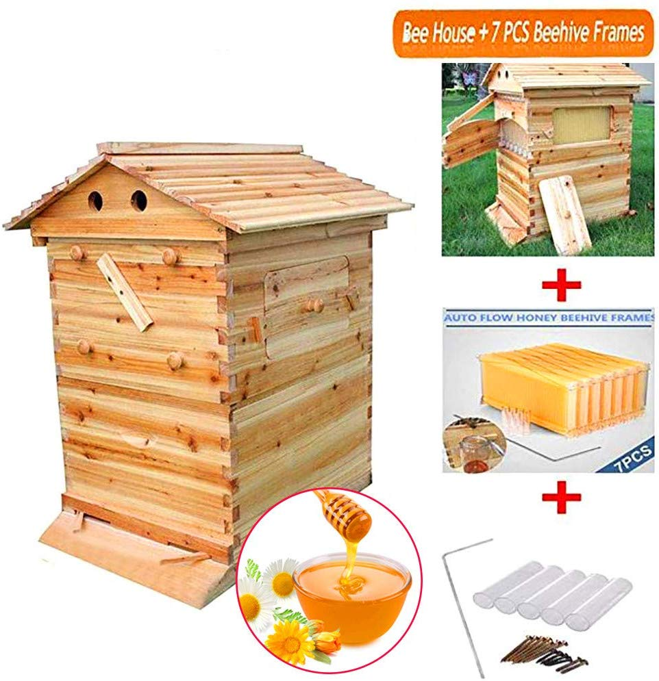 Automatic Wooden Beehive House 7pcs Beehive Frame Beehive Wooden Bees Beekeeping Equipment Hive Beehive Supply Beekeeper Tool