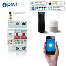 Disjoncteur Wifi à télécommande ouverte 2P, commutateur Intelligent, protection contre les surcharges et les courts-circuits