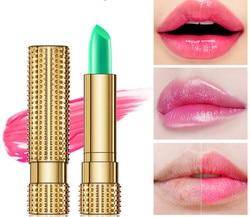 New!Moisture Lip Balm Aloe Vera Natural Lipbalm Temperature Changed Color Lipstick Long Lasting Nourish Lip Care Makeup TSLM1