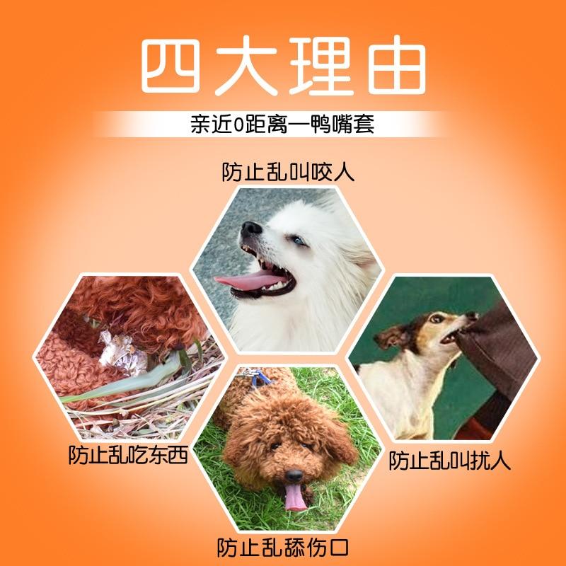Dog Bottle Nipple ~~~ Case Anti-Bite Called Anti-Eat Zhi Fei Qi Gou Zui Zhao Teddy ~~~ Small And Medium ~~~ Puppy Pet