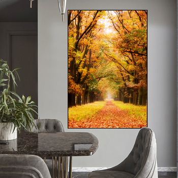 De Hoge Veluwe National Park of Netherlands Autumn Leaves Poster Autumn Canvas Painting Prints Wall Art Pictures for Home Decor 2