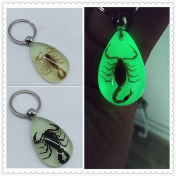 Motorcycle Accessories Insect Luminous Amber Keychain Waist Pendant for Aprilia DORSODURO 1200 750 FALCO SL1000 image