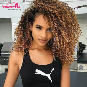 Wonderful Hair Wigs Brazilian Remy Jerry Curly Hair Omber Blonde Brown color 4 and T1B/4/27 Wigs Machine Made Short Human Hair