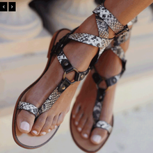 Women Shoes Sandals Summer Flat with Shoes
