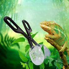 Amphibian suprimentos réptil clipe transparente ferramenta de limpeza pet réptil tartaruga lagarto sapo aranha limpeza clipe