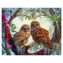 40 * 50cm DIY Digital Oil Painting Hand-painted Home Decor Painting Oil Painting Garden house cat cozy owl town's harbor 08