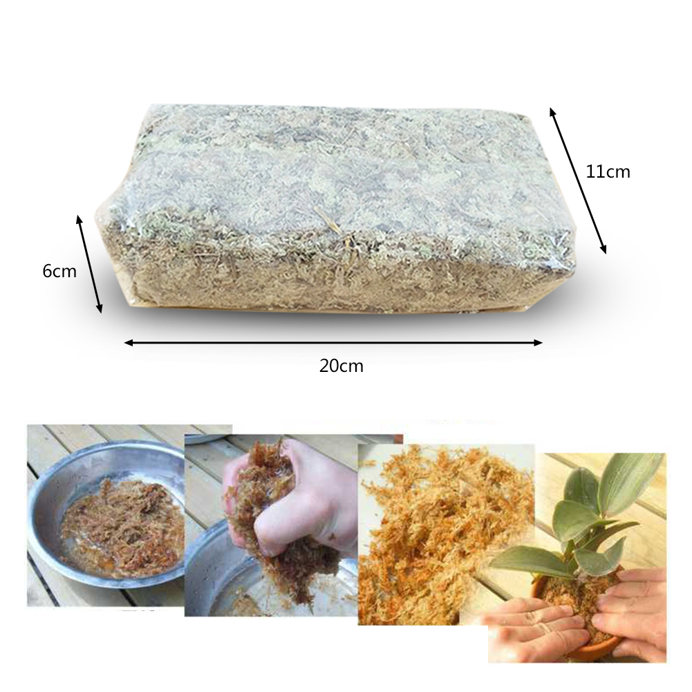 6L Organic Fertilizer For Water Moss Dry Moss Water Grass Butterfly Orchid Soilless Cultivation Substrate Soil