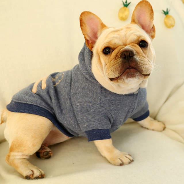 Puppies Shih Tzu French Bulldog