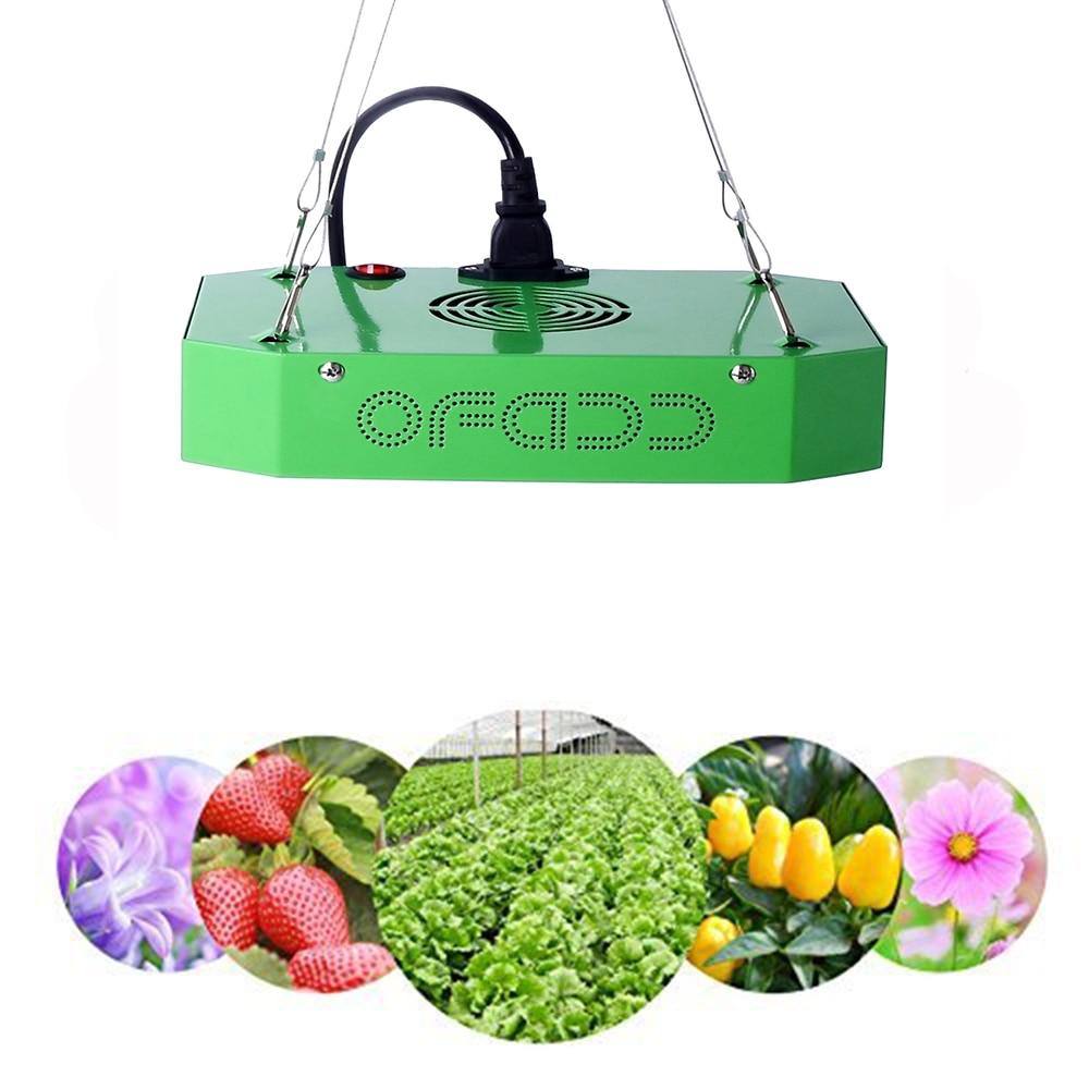 Lampe phyto 300W LED à spectre complet lumière de croissance pour serre plante d'intérieur et fleur lampe de croissance de plantes à haut rendement fitolamp