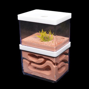 Image 3 - Novo grande gesso ecológico natural fazenda, grande ninho de formiga inseto castelo workshop animal de estimação casa de formiga com área de alimentação
