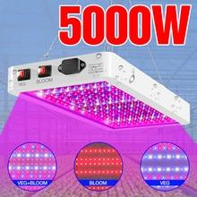 Diodo emissor de luz da planta do espectro completo de fito da lâmpada 4000w 5000w plântula impermeável interna do diodo emissor de luz de fito para a estufa cresce a caixa