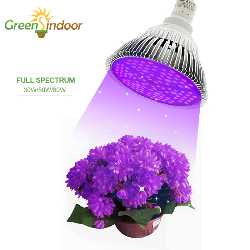 LED Grow Light For Succulents 80W 50W 30W 10W E27 Bulbs Phyto Lamp For Plants Led Full Spectrum Lights For Indoor Flowers Plants