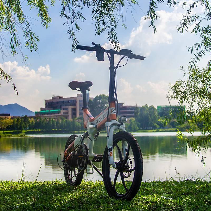 [EU Direct] RICHBIT TOP-730 48V 250W 8Ah 20inch Folding Moped Electric Bicycle 32km/h Top Speed 45-50km Mileage Electric Bike