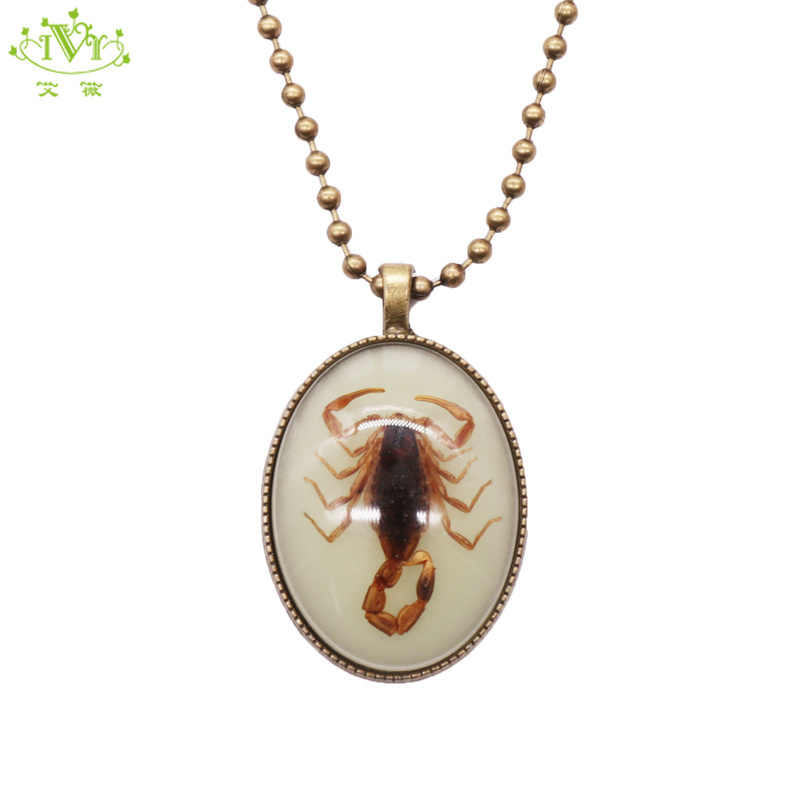 Vintage Arachnid Scorpiones of the Real Kind Scorpion Pendant Oddity Taxidermy Jewelry Bug Lover