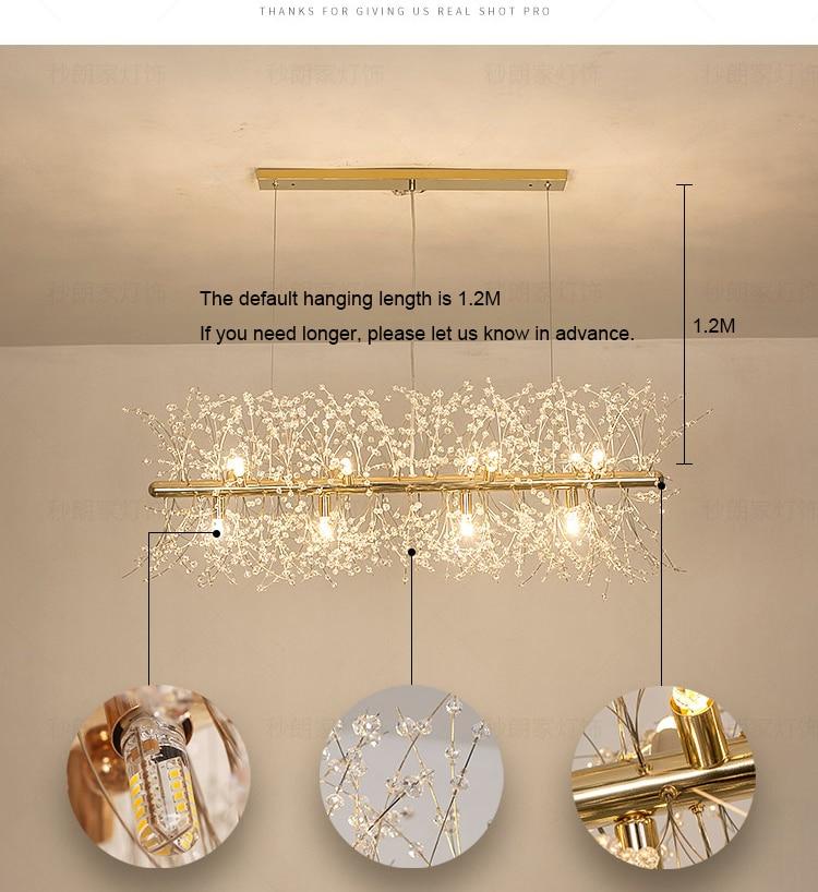 Gold Kitchen vibrant ceiling light