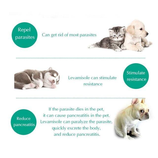 Chzk animal de estimação gato e cão desworming medicina cão intestinal nematóide roundworm pequeno intestinal tênia desworming medicina 6 cápsula