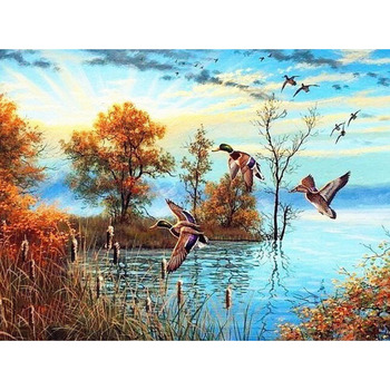 100% 5D Diy Daimond Painting Cross stitch landscape wild duck Diamond Embroidery Full Square/Round Rhinestones Painting M1004 image