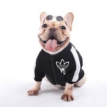Одежда для собак, зимние теплые куртки для собак, щенков, чихуахуа, одежда с капюшоном для маленьких и средних собак, щенок йоркширского терьера, наряд XS-XXL