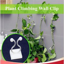 10 20 sztuk roślin ściana wspinaczkowa klip niewidzialne ściany winorośli oprawa ściany przyklejony uchwyt z hakiem roślin klatki obsługuje tanie tanio Z tworzywa sztucznego Plant Climbing Wall Clip