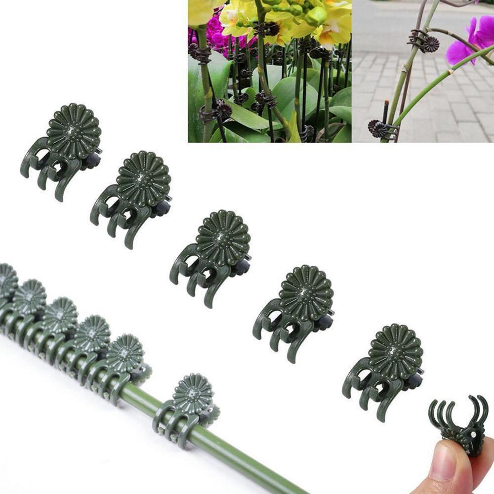 20Pcs Vine Plastic Clips Hanging Stems Decoration Orchid Stalks Fix Flower Grow Upright Grafting Tool Garden Plant Support