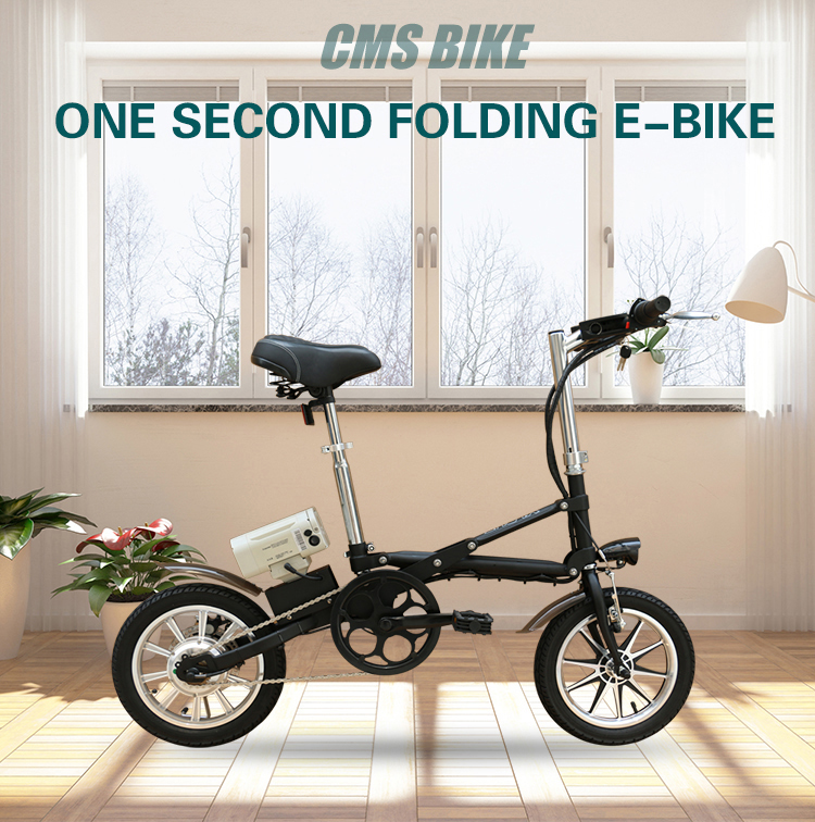 36V250W 14'' folding electric bicycles with lithium battery brushless motor electric bikes 1