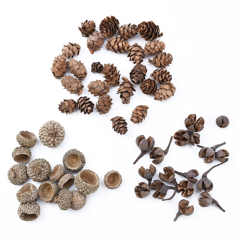 20pcs Natural Dried flowers Pine cone Acorn wholesale Artificial Flower For Home Christmas DIY Garland Wreath wedding Decoration 1