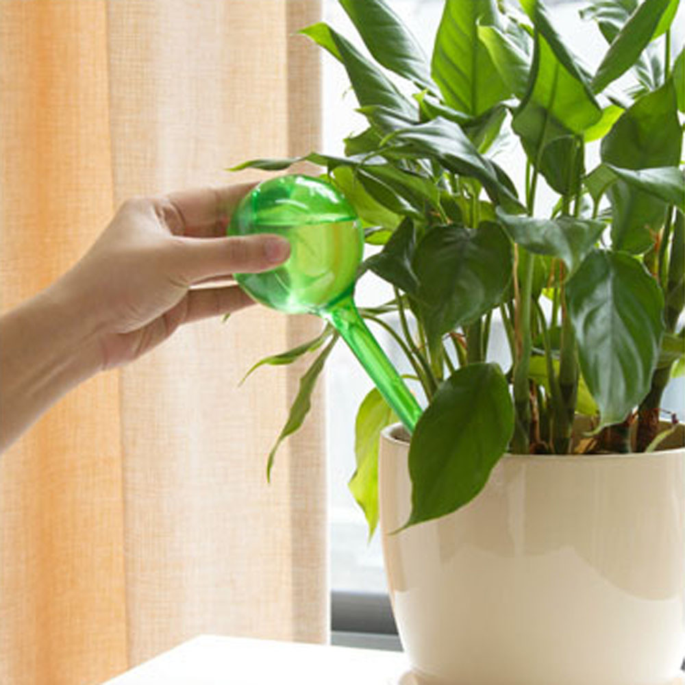 New House//Garden Water Houseplant Plant Pot Bulb Automatic Self Watering Device