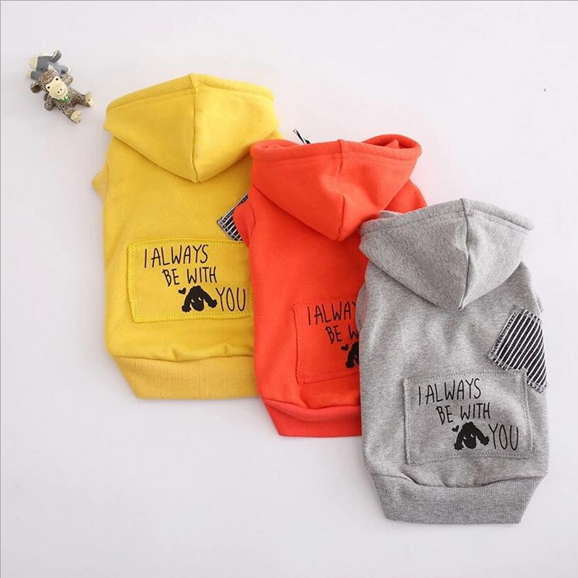Petalk Various Style Letter Style Dog Hoodie Cat Teddy Bulldog Pet Sweatshirt Cat Clothes For Small Pet Cat