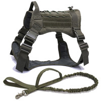 RG Harness and Leash