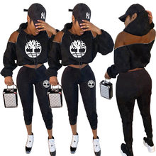 2019 Plus Size 2 Tweedelige Set Trainingspak Vrouwen Sportwear Casual Lange Mouwen Rits Hoodie Tops & Shorts Pak Outfits playsuit(China)
