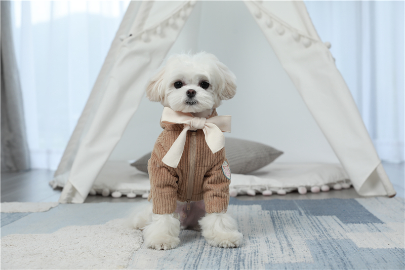dogs winter apparel thick outfit (3)