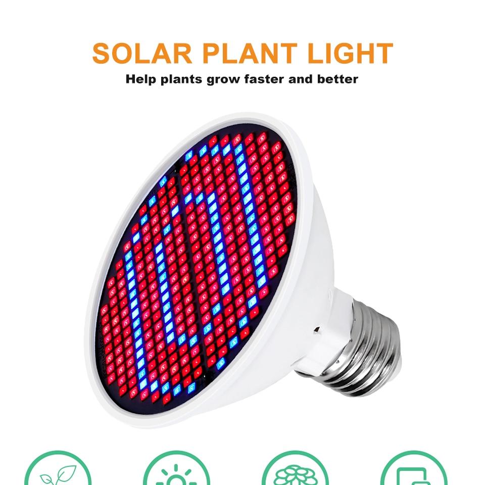 leds plant fill luz phyto led crescer