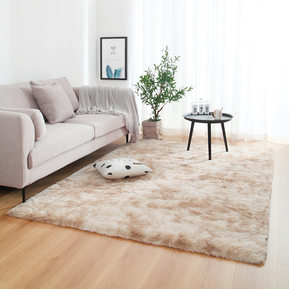 Carpet Rug For Living Room Rugs And