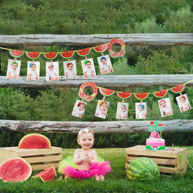 Watermelon monthly photo banner watermlon photo banner watermelon 1st birthday 12 year photo banner