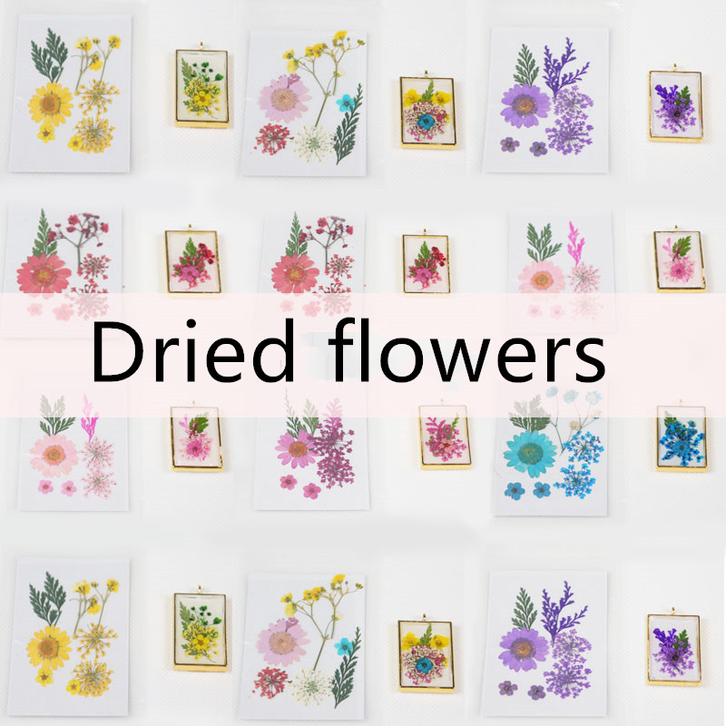 QIAOQIAO DIY Dried Flowers Leaf UV Resin Decoration Flower Dry Beauty Nail Art Decals Epoxy Mold DIY Filling Jewelry