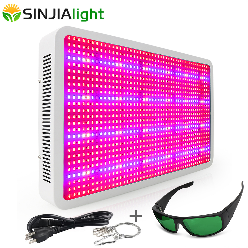 300W 600W 800W 1000W 1200W LED Grow Light Full Spectrum With Glasses Led Plant Lamp For Fruits Vegs Grow Tent Greenhouse