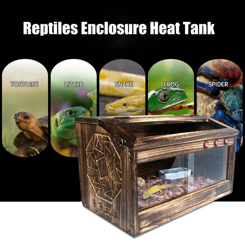 Grand Reptiles Cage lézard serpent maison tortue en bois Pet Tank elevage boite décoration Transparent Reptiles maison