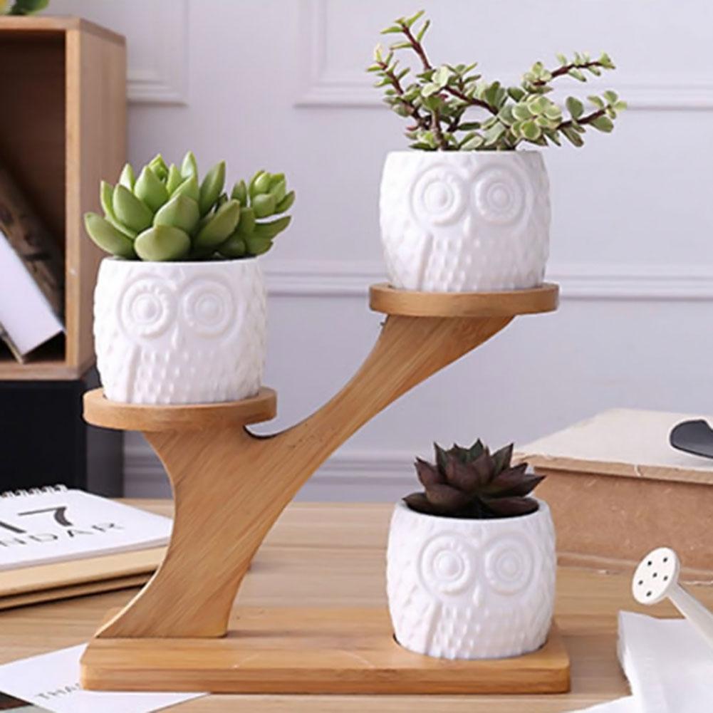 Керамический горшок для растений, керамический горшок в форме Совы и тыквы, Бамбуковая полка, набор для растений, украшение дома|Цветочные горшки и кадки|   | АлиЭкспресс
