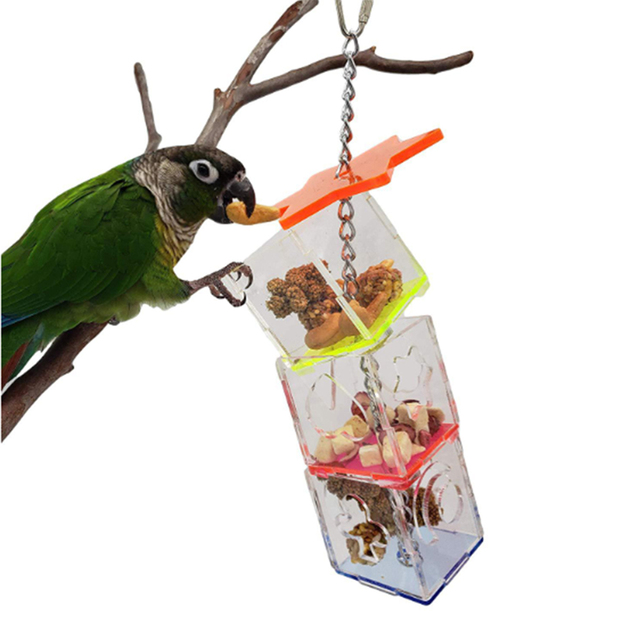 3 Layer Parrot Hanging Chewing Feeding Toy Bird Feeding Transparent Food Feeder Holder Hanging Forage Box Cage Toy