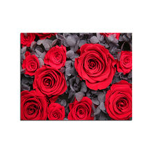 Voll Platz/runde DIY Diamant Malerei Kreuz Stich Rote rose Diamant Stickerei Blumen Mosaik Hand homee dekoration M760(China)