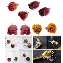 8 Pieces Mixed Resin Dried Flower Rose Charms DIY Jewelry Making Findings