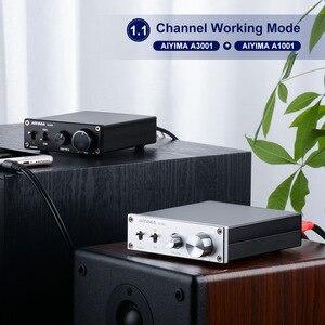 Image 5 - AIYIMA TPA3255 усилитель сабвуфера 300 Вт цифровые HIFI моно усилители мощности класс D домашний звук аудио Versterker NE5532 OP AMP