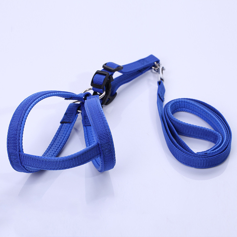 Pet Daily Necessities Pet Traction Rope Dog Maker Puppy VIP Pomeranian Unnecessary Dog Collar