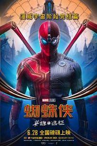 蜘蛛侠:英雄远征[BD1080高清中字]