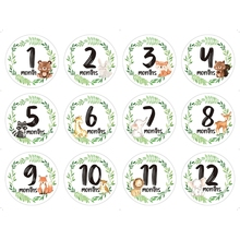 12 Pcs/Set Newborn Milestone Memorial Month Stickers Floral Baby Monthly Stickers Photography Commemorative Card