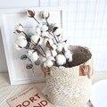 Getrocknete Blumen Dekoration Natürlich Getrocknete Baumwolle 3pc Natürlich Getrocknete Baumwolle Stammt Bauernhof Künstliche Blume Füllstoff Floral Decor 2021