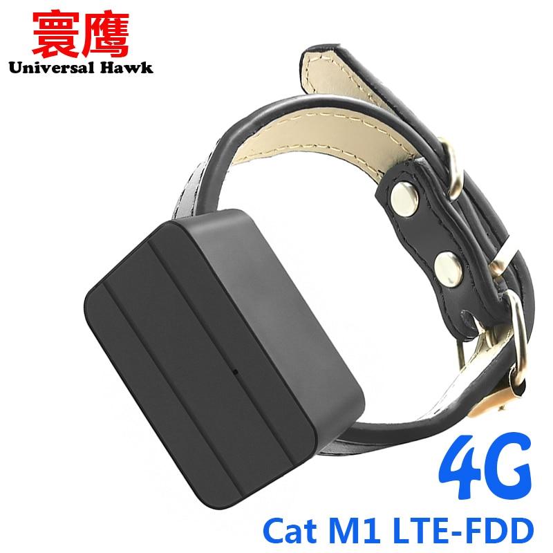 Домашние питомцы собаки 4G Мини GPS трекер детей персональный локатор анти-потерянный отслеживания устройства голосовой монитор кошка M1 LTE-FDD ...