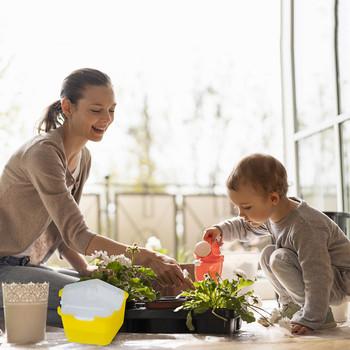 Nasiona kiełków taca akcesoria ogrodowe nasiona kiełków doniczki przedszkolne do kwiatów hydroponiczne doniczki do uprawy kiełków doniczki ogrodowe tanie i dobre opinie CN (pochodzenie) Seedling box Z tworzywa sztucznego Niepowlekany