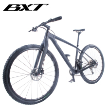Free Shipping 29er Mountain Bike T800 Carbon MTB Bicycle Cycling 1*11 Speed Mechanical Brake 29er Carbon 100*15mm Front Fork
